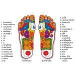 วิธีการนวดฝ่าเท้าขั้นพื้นฐานและกดจุดฝ่าเท้าเบื้องต้นด้วยตัวเอง บรรเทาโรค ฟื้นฟูสุขภาพ (34 ท่านวด)