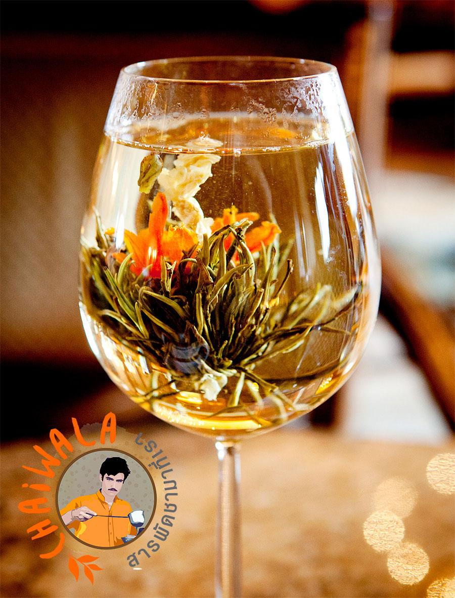 ชาดอกไม้จีน (Flower Blooming Tea)