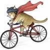 10 เรื่องน่ารู้ ที่ช่วยให้คุณปั่นจักรยานได้ดีขึ้น