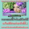 #IC แก้อาการ USB TOSHIBA LED TV อะไหล่ของแท้ต้องที่นี่ โปรดระวังสินค้าลอกเลียนแบบ (Original) for Repair TOSHIBA LED TV