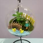 ชุดจัดสวนในโหลแก้ว