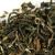 ชาเต็มใบ (Whole Leaf Tea)