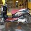 Rental Honda Scoopy Club 12 110cc Auto thumbnail 7