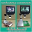 Digital HD LCD Display Microscope 1-600X 3.6MP 4.3inch สำหรับช่างมืออาชีพ thumbnail 5