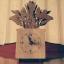 ของฝากที่ระลึก ตั้งโต๊ะทำงาน นาฬิกากระถางไม้ แบบจำลอง ต้นกล้วยพัด thumbnail 2