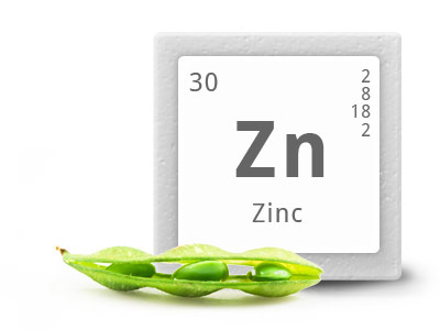 ซิงค์ อมิโน แอซิด คีเลต 20% Zinc Amino Acid Chelate 40 มก./mg.